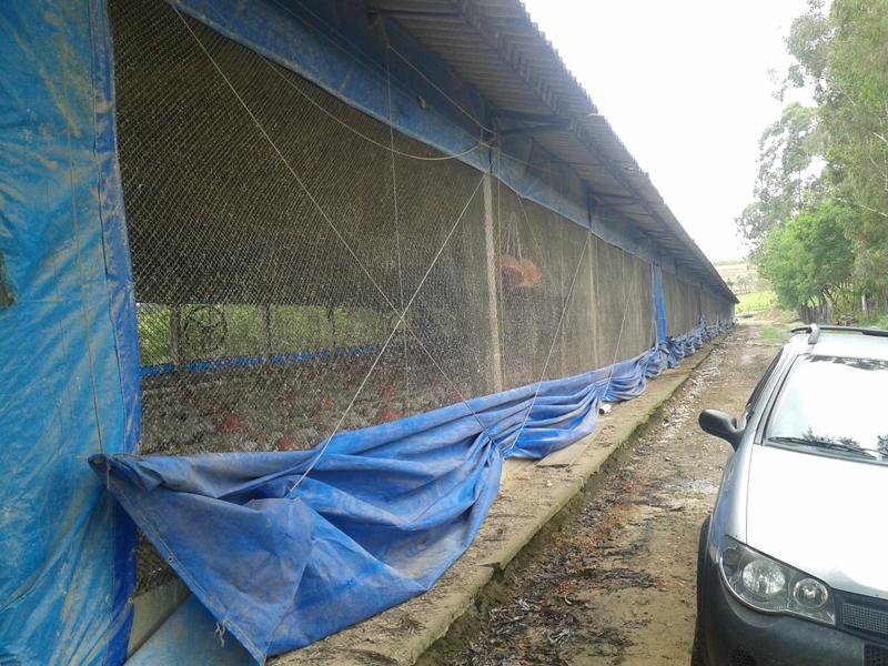 Manutenção Sitio com Granja CAL