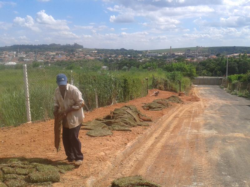 Manutenção e Plantio de Grama CSF